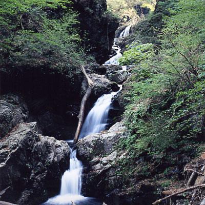 妙見五段の滝